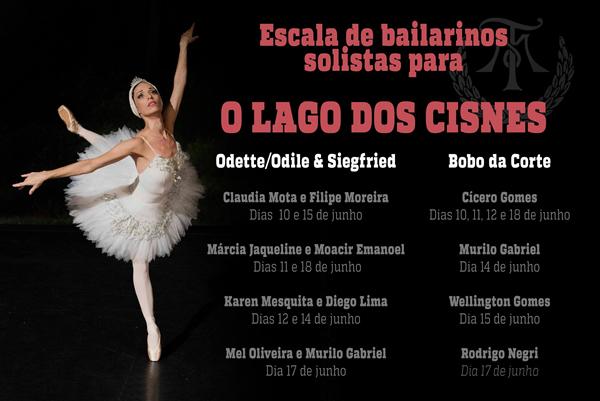 Theatro municipal do RJ_O Lago dos Cisnes_2