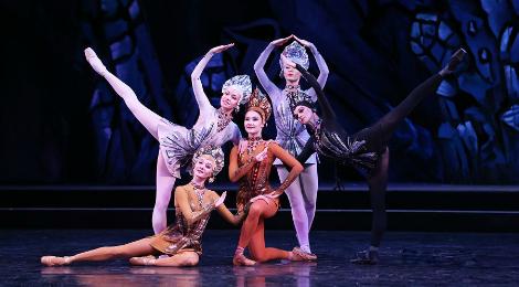 """Sessão """"Pipoca com Ballet"""" #003: A Flor de Pedra"""