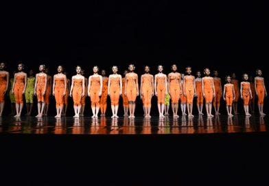 Ballet Stagium seleciona alunos para o Projeto Joaninha