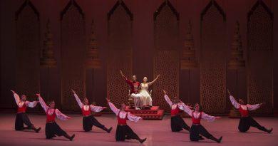 Audição aberta para O Quebra-Nozes da Cisne Negro Cia de Dança