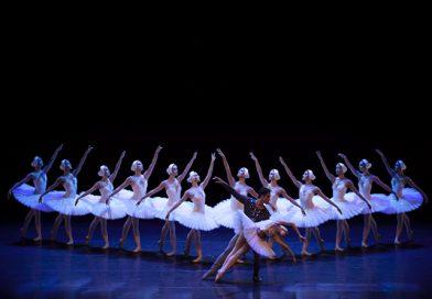São Paulo Companhia de Dança abre audições para a Temporada 2020 de O Lago dos Cisnes