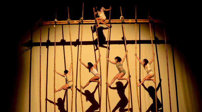 Contemplado pelo Rumos Itaú Cultural, Cia Nós No Bambu abre convocatória para residência voltada para a arte corpo bambu