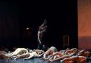 Balé da Cidade de São Paulo lança livro e documentário para celebrar os 50 anos